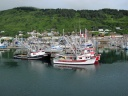 St. Paul Harbor in Kodiak